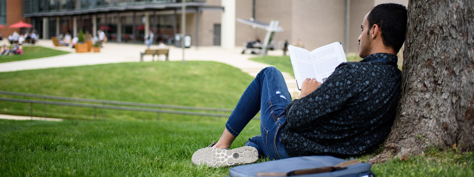 Man reading on university lawn